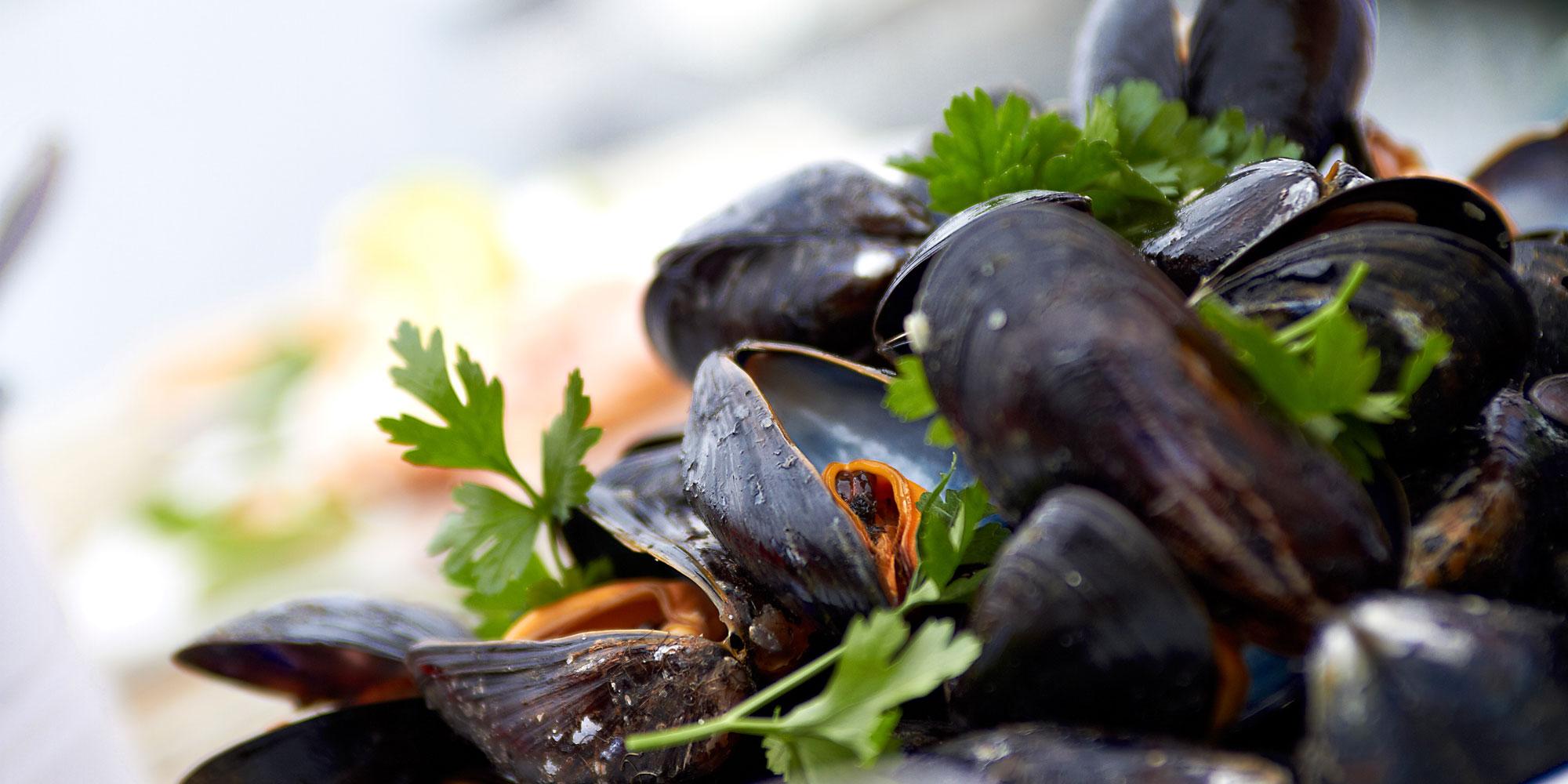 Cooked-mussles-Foto-Jonas-Ingman